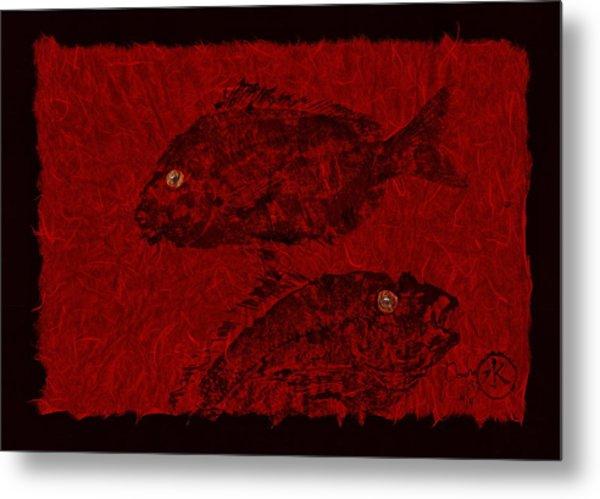 Gyotaku Scup Series 4 Red Unryu Paper Metal Print