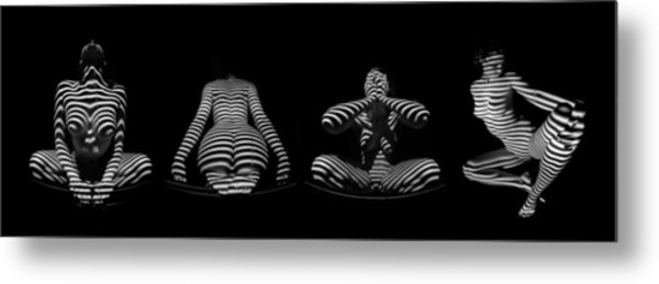 H Stripe Series One Sensual Zebra Woman Abstract Black White Nude 1 To 3 Ratio Metal Print