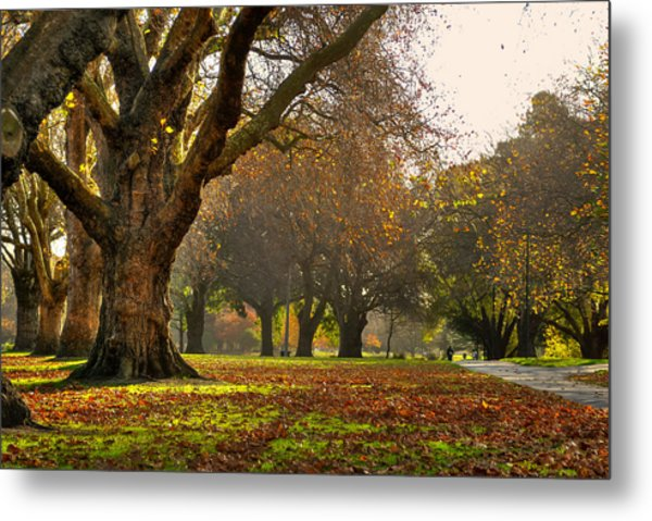 Hagley In Autumn Metal Print