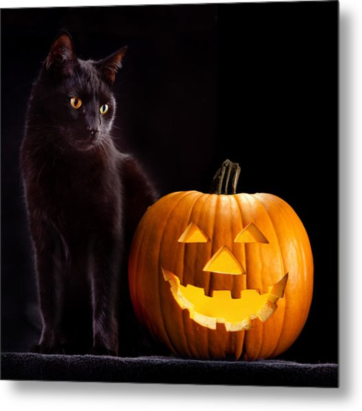 Halloween Pumpkin And Cat Metal Print