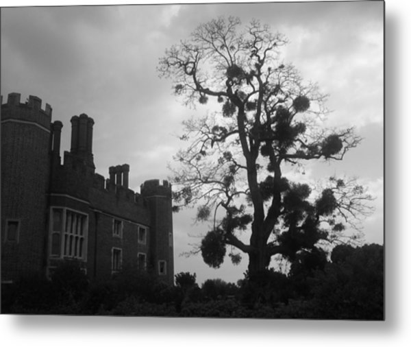 Hampton Court Tree Metal Print