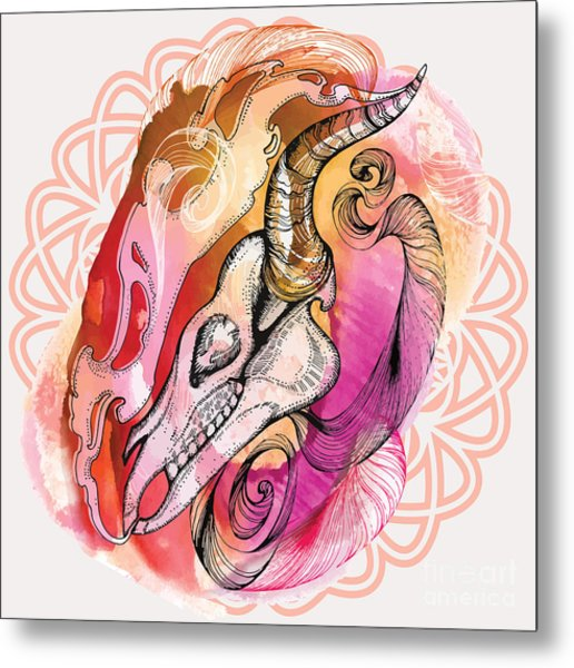 Hand Drawn Horse Skull. Hand Draw Metal Print