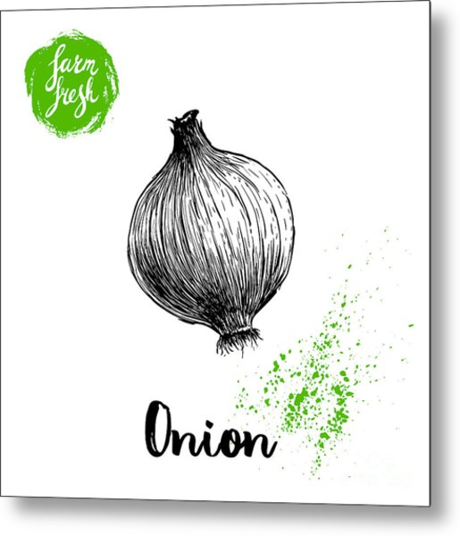 Hand Drawn Sketch Onion. Farm Fresh Metal Print