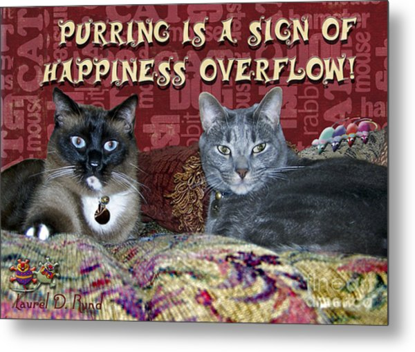 Happiness Overflow Metal Print