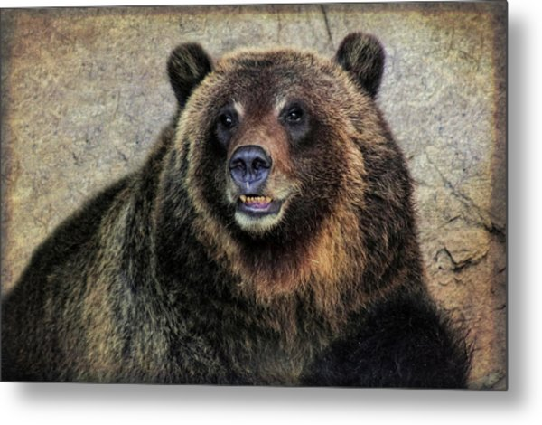 Happy Grizzly Bear Metal Print
