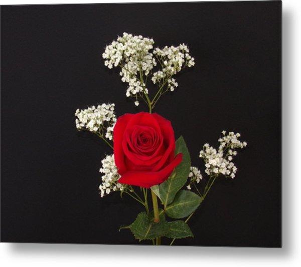 Happy Rose Metal Print
