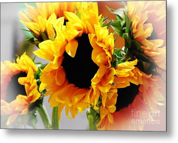 Happy Sunflowers Metal Print