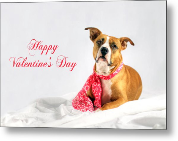 Fifty Shades Of Pink - Happy Valentine's Day Metal Print