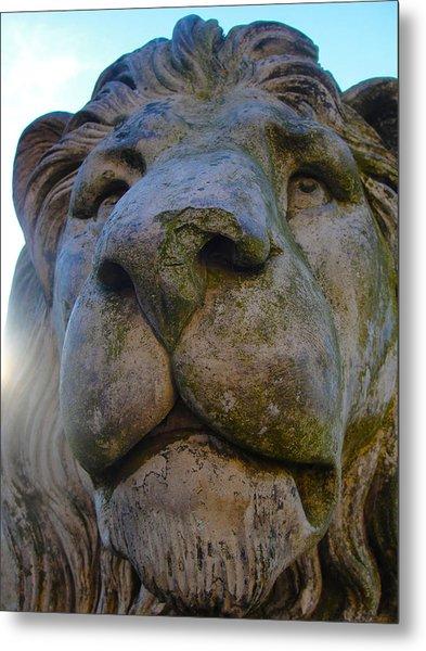 Harlaxton Lions Metal Print