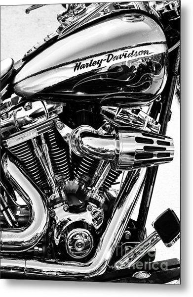 Harley Monochrome Metal Print by Tim Gainey