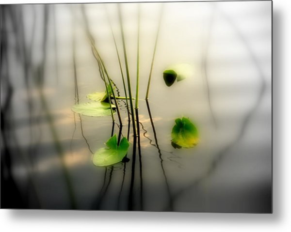 Harmony Zen Photography II Metal Print