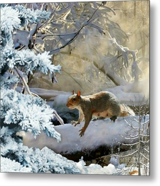 Harry In Winter Metal Print