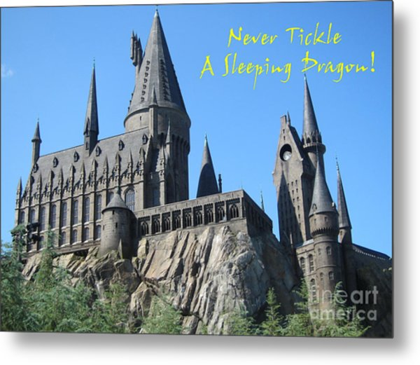 Harry's Hogwarts Metal Print