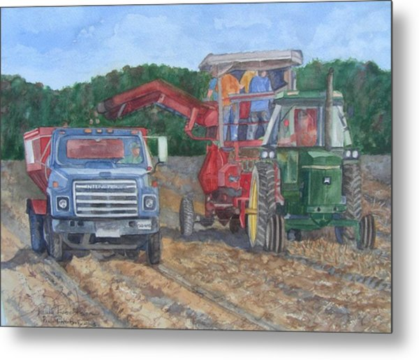 Metal Print featuring the painting Harvester by Paula Robertson