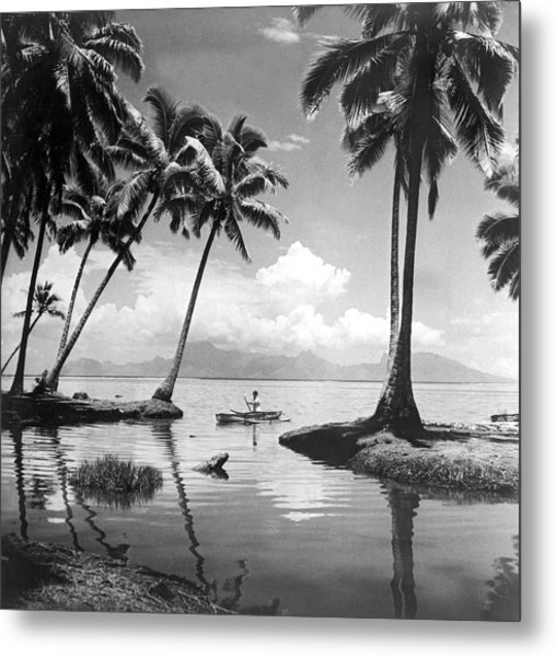 Hawaii Tropical Scene Metal Print