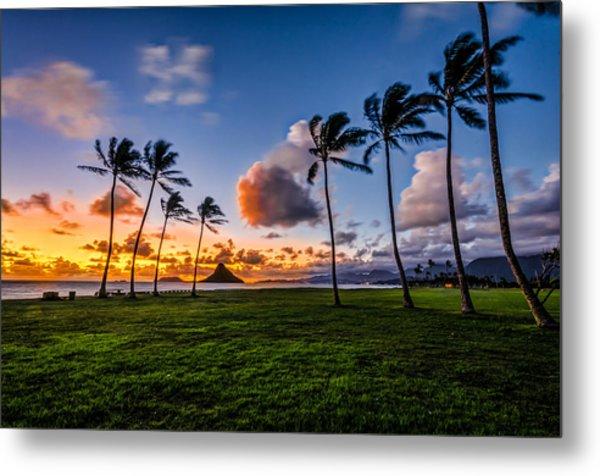 Chainaman Hat Hawaii Metal Print