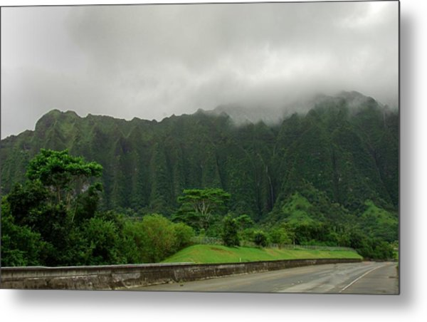 Hawaiian Rain Forest Metal Print