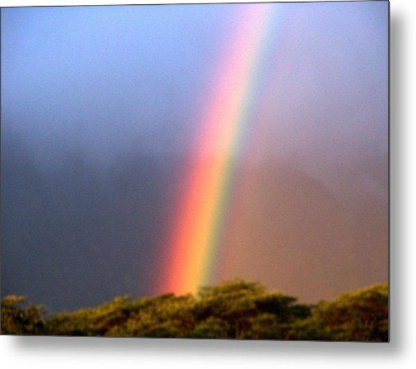 Hawaiian Rainbow Metal Print