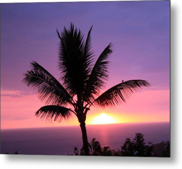 Hawaiian Sunset And Palm Metal Print