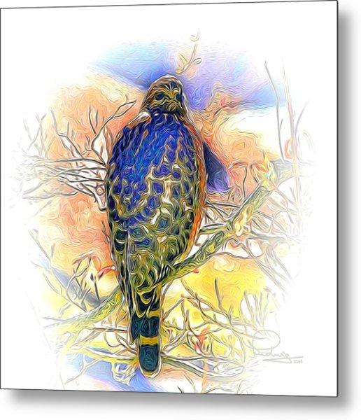 Hawk 2 Metal Print