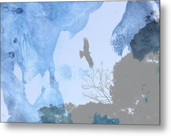 Hawk In Flight 1 Metal Print