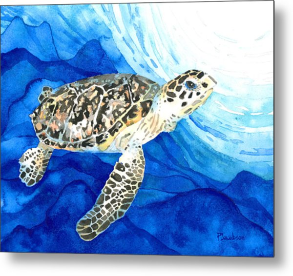 Hawksbill Sea Turtle 2 Metal Print