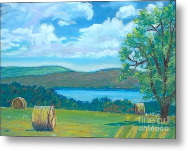 Hay Bales In North Carolina  Metal Print by Frank Giordano
