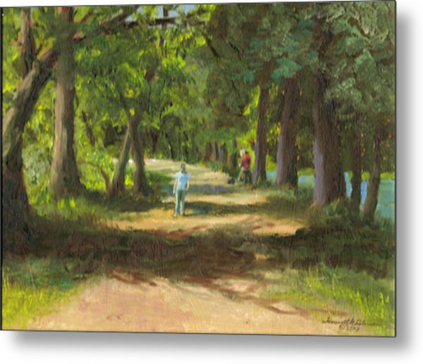 Hayden Shaded Path Metal Print