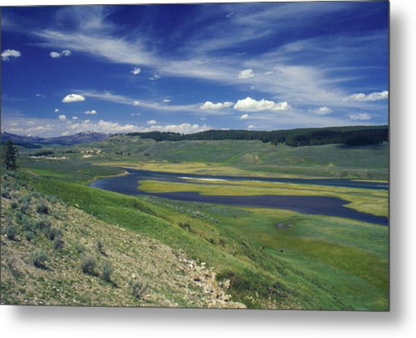 Hayden Valley Metal Print