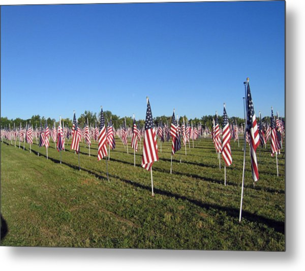 Healing Fields Metal Print