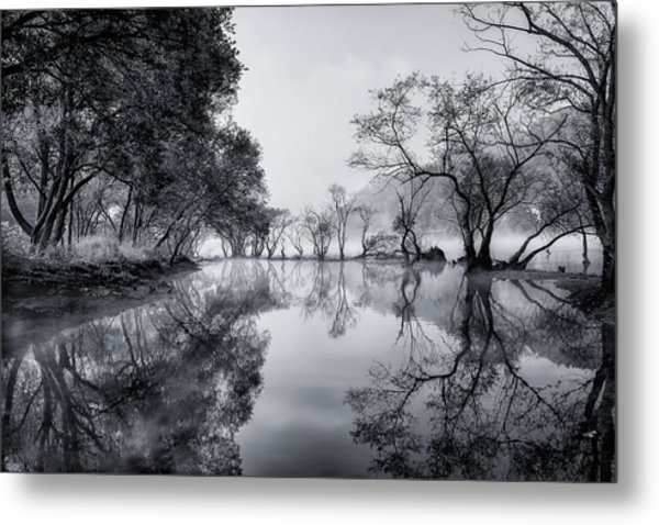 Healing Spot Metal Print by Tiger Seo