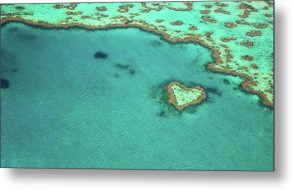 Heart Reef Metal Print by Kokkai Ng