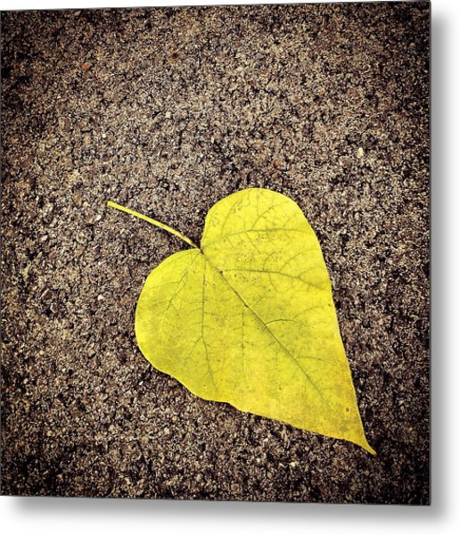 Heart Shaped Leaf On Pavement Metal Print