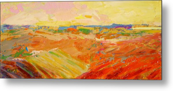 Heartland Series/ Prairies Metal Print by Marilyn Hurst
