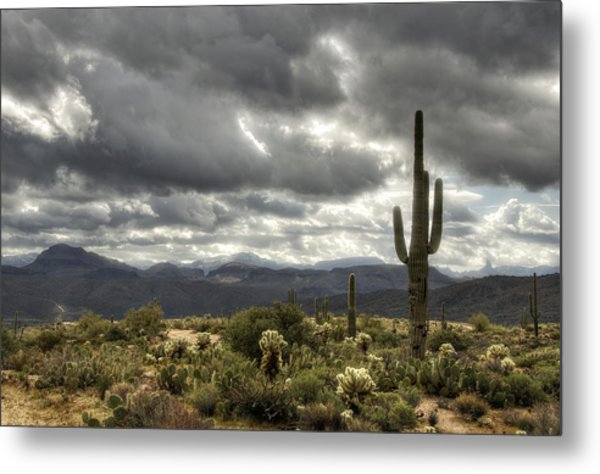Heavenly Desert Skies  Metal Print