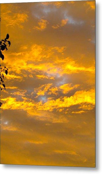 Heaven's Sky Metal Print by Andrea Dale