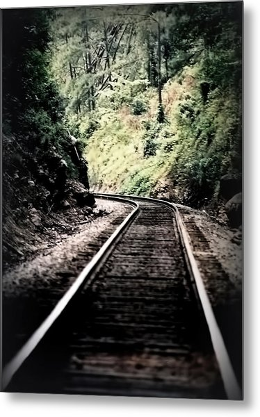 Hegia Burrow Railroad Tracks  Metal Print