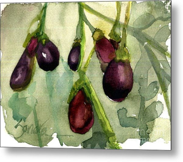 Heirloom Eggplant Metal Print by Sandra Stone