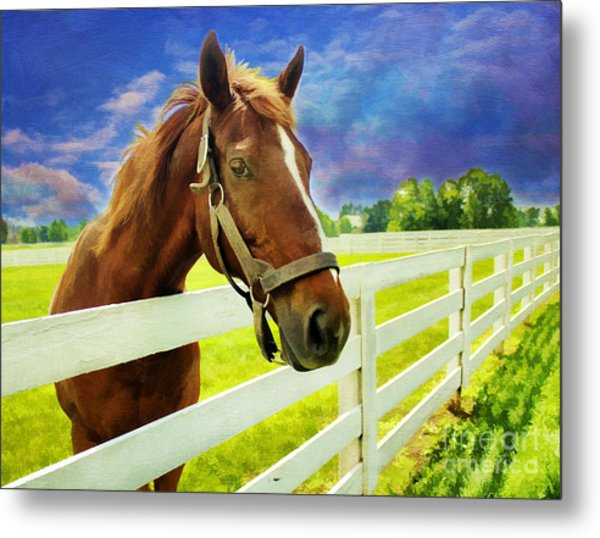 Hello From The Bluegrass State Metal Print