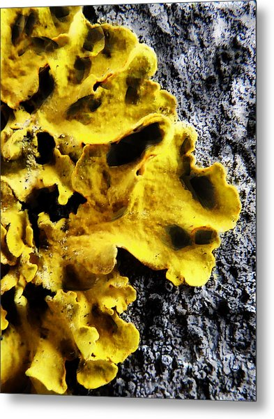 Hello Yellow Metal Print