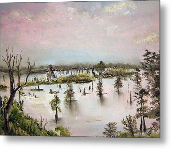 Henderson Swamp Metal Print