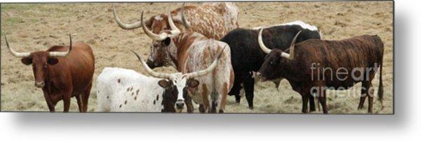Herd Instinct Metal Print by Joe Jake Pratt