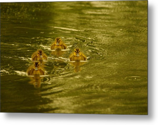 Here Comes The Little Bread Beggers Metal Print