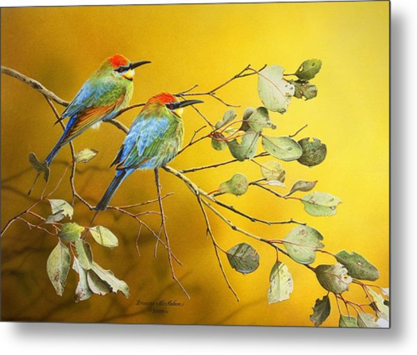 Here Comes The Sun - Rainbow Bee-eaters Metal Print