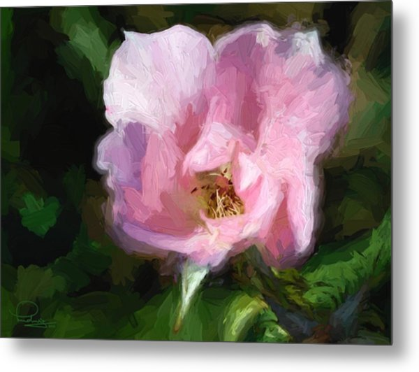 Heritage Rose Metal Print