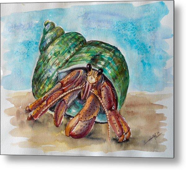 Hermit Crab 4 Metal Print