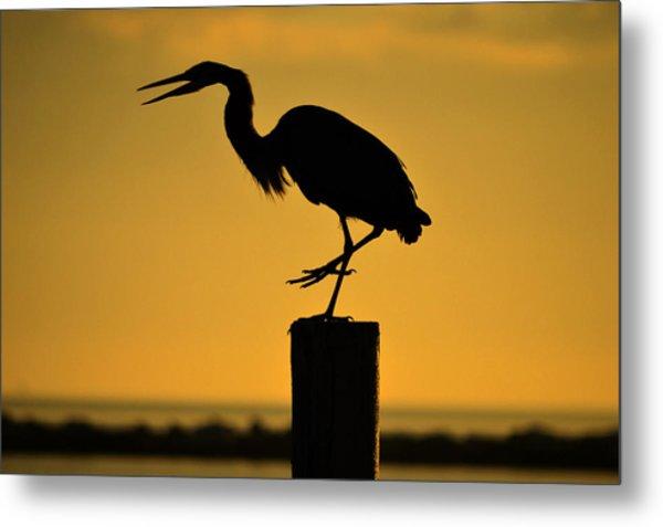 Heron At Sunrise Metal Print