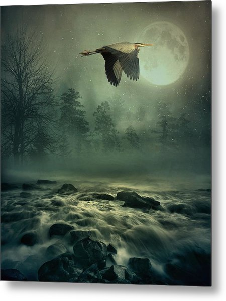 Heron By Moonlight Metal Print