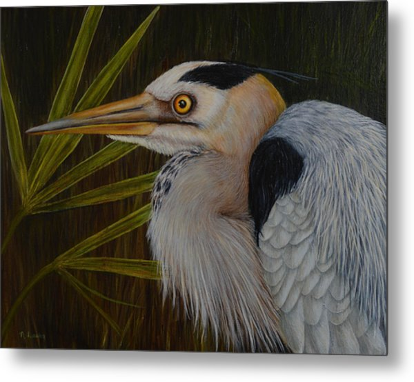 Heron In Hiding Metal Print