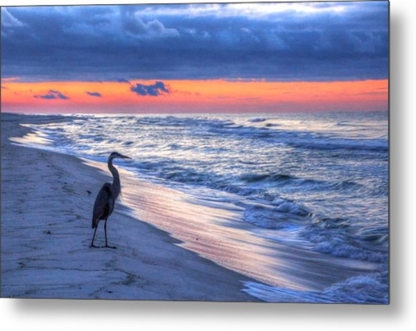 Heron On Mobile Beach Metal Print